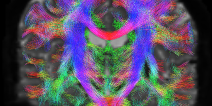 A colourful abstract image of a network